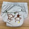 hippybottomus-Training-Pants-monkey-back