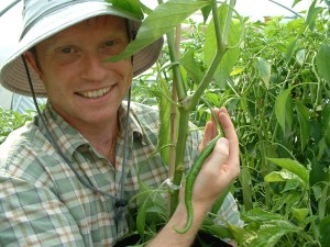 Contact Little Green Men Chilli Rich with a green cayenne chilli plant in Lancashire Farm