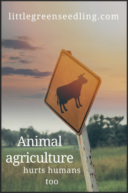 animal agriculture