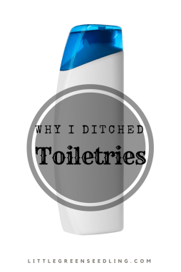 Why I stopped using toiletries