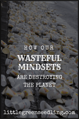 Our Wasteful Mindset and Disposable Culture
