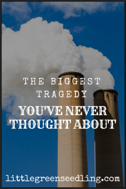biggest tragedy you've never thought about