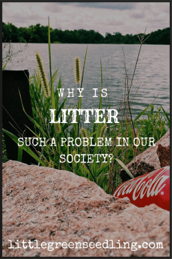 why is litter such a problem