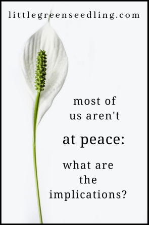 At any given moment, most of us are bored, dissatisfied, restless, angry, jealous, resentful or otherwise distressed. How can we be at #peace? #mentalhealth #spirituality