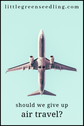 We can no longer afford to ignore the environmental impact of aeroplanes. Is it time to give up all unnecessary plane #travel? #airplane #aeroplane #environment #climatechange #globalwarming #sustainability