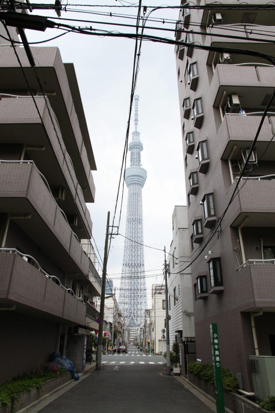 Tokyo Sky Tree - Little Grey Box