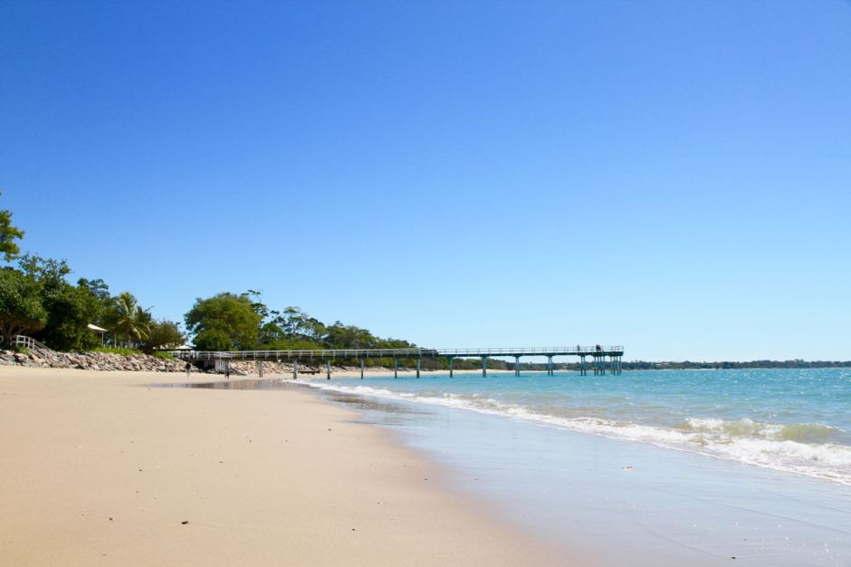 Hervey Bay - 14 Reasons you should go whale watching in Hervey Bay Travel Blog