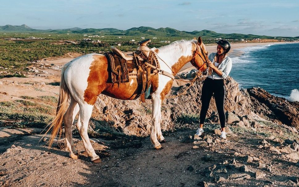 Sunset horse ride in Cabo ©Little Grey Box