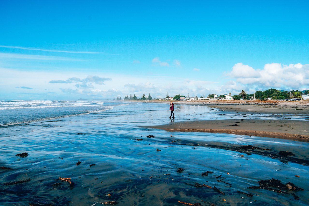 Waihi Beach © Little Grey Box