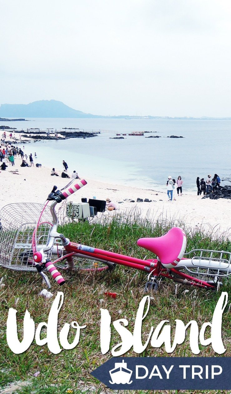 Udo, an island located 3.5 kilometers off the eastern coast, is a compact version of Jeju. With its variety of beaches (white sand, black sand, rock formations), scenic peaks, romantic lighthouses, and fields of flowers, it's a quicker and more relaxing way to experience Jeju.
