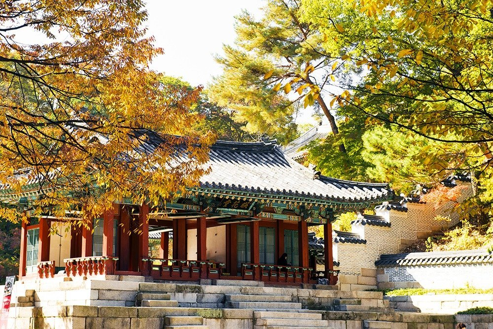 Spend the vibrant autumn season in South Korea's capital – Seoul! Do your shopping, cultural sightseeing, and food tripping all under the bright red and orange canopy of trees – click through to plan your trip!