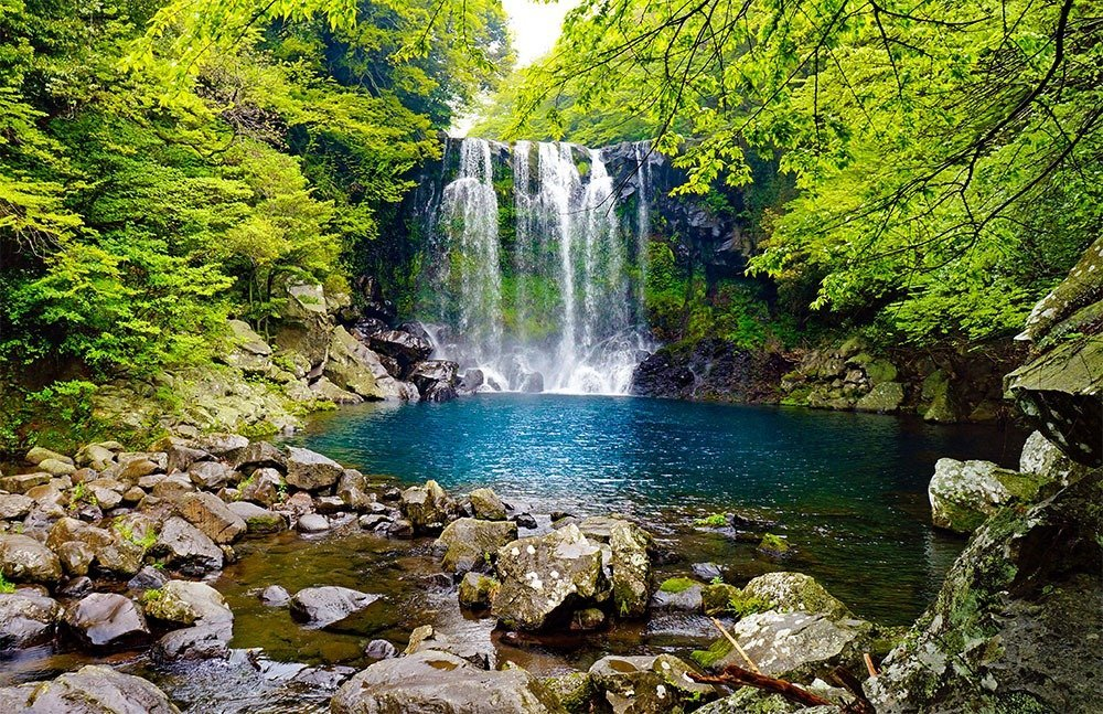 Jeju is filled with amazing natural landscapes at every turn. From stunning waterfalls to beautiful beaches and vibrant floral fields, there's much to see and explore in South Korea's favorite holiday destination. Plan your trip to the island now – here's where to stay in Jeju.