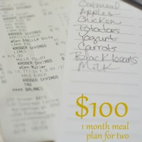 $100 a month meal plan
