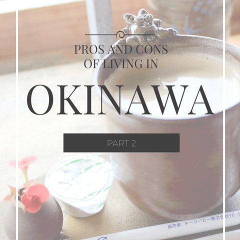 Pros and Cons of Living in Okinawa: Part 2