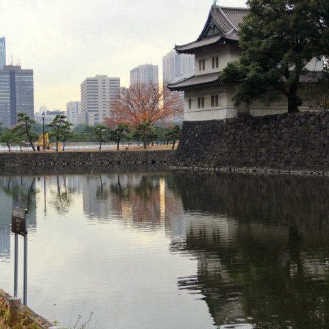 Imperial Palace East Gardens (皇居東御苑)