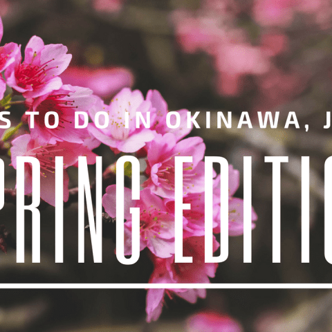 Things To Do In Okinawa, Japan: Spring Edition