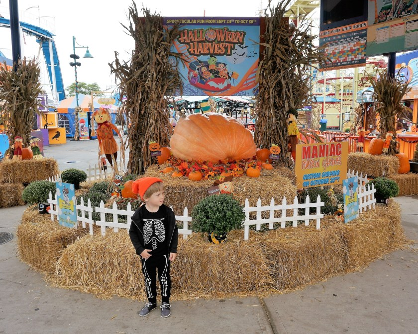 halloween is near theres no need to fear halloween harvest at luna park is the perfect place for little ones to bring in the fun fall season