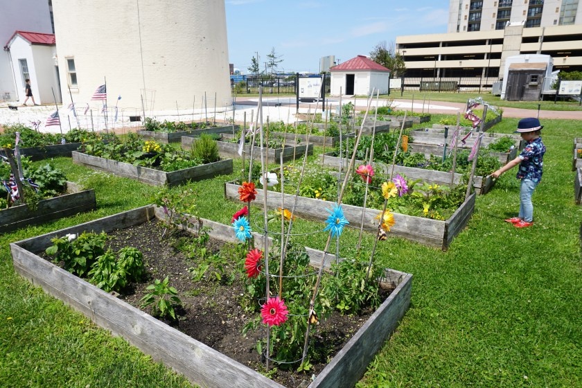 Community garden at the Absecon Lighthouse in Atlantic City, NJ