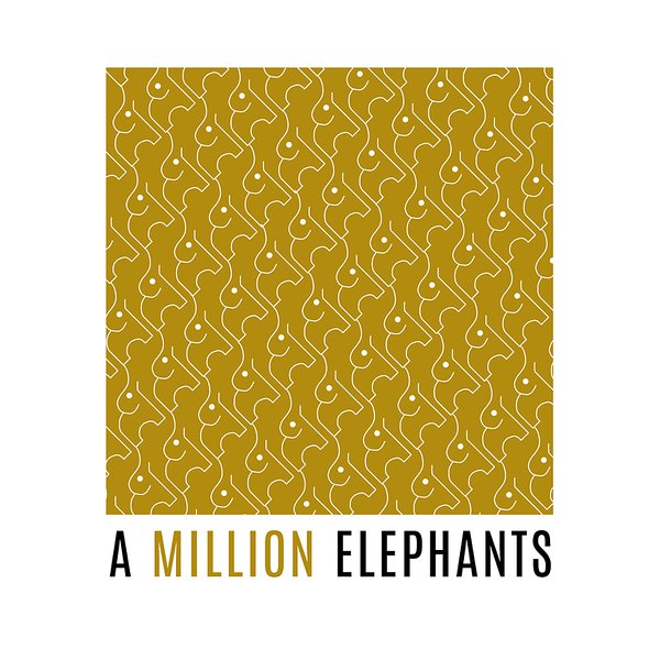 An Interview with A Million Elephants