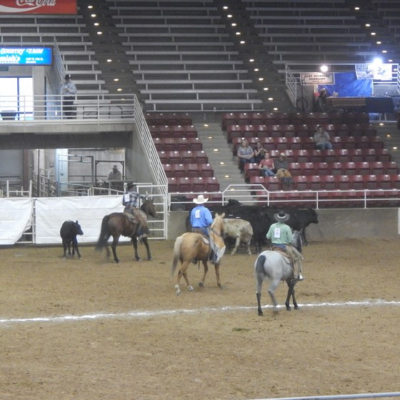 ranch-rodeo-3