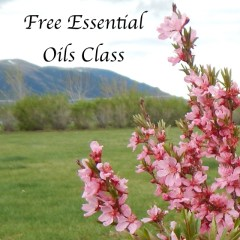 Want to Learn about Essential Oils Sign up for this Free Class
