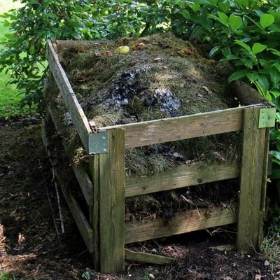 How to Compost and What to Compost