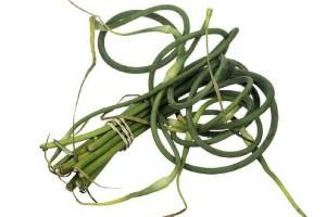 Garlic scapes tied in a bundle