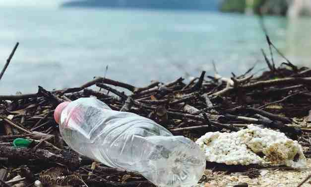 8 Easy Ways to Reduce Single-Use Plastic While Travelling