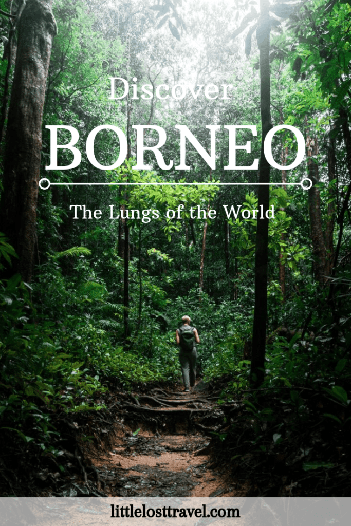 Pinterest pin of Discover Borneo: The Lungs of the World. Woman walking through a jungle.