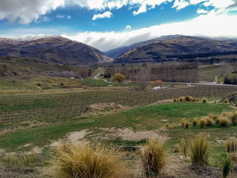 The dry climate of the Central Otago region in the South Island
