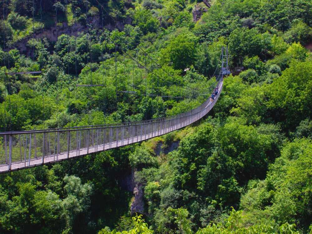 Image of a canopy walk over Monteverde Cloud Forest in Costa Rica.