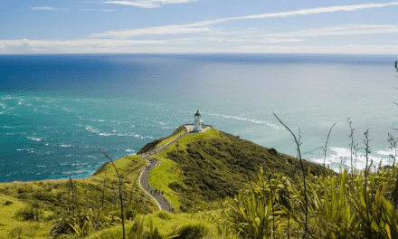 New Zealand North Island Itinerary: The Best 2 Week Road Trip