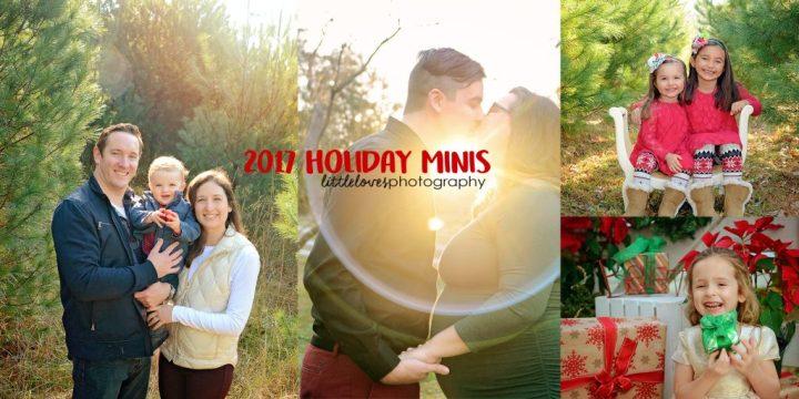 Holiday Minis 2017