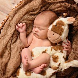 BL L newborn 3078