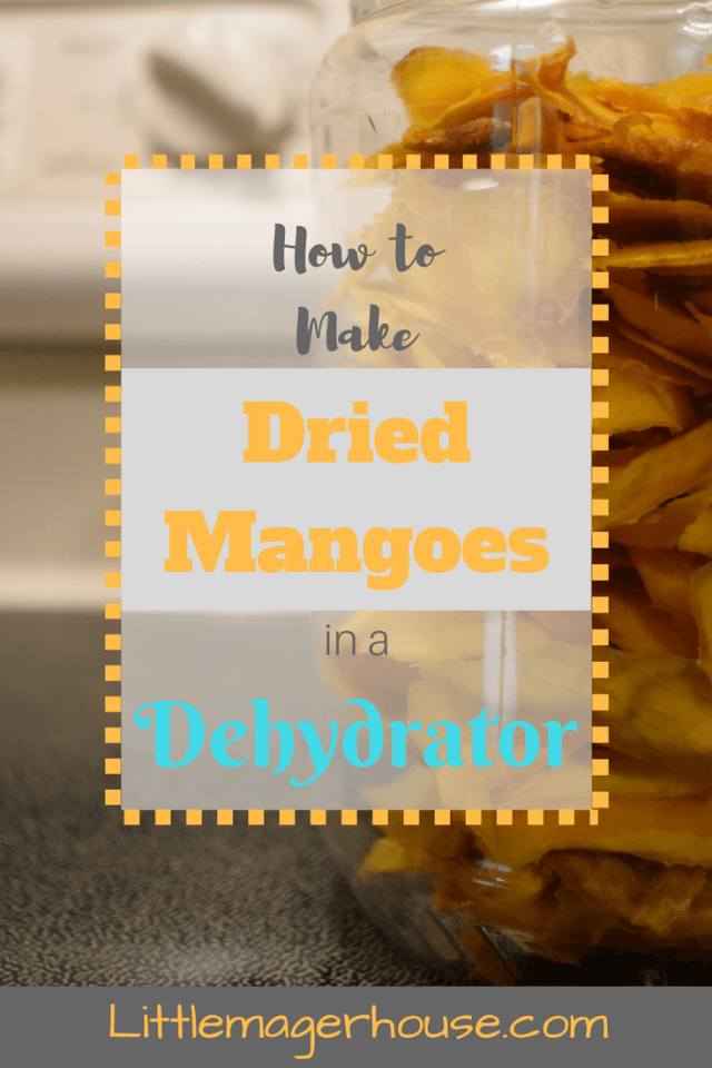 How To Make Dried Mangoes In A Dehydrator