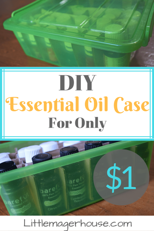 DIY Essential Oil Case for Only $1