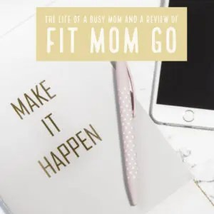 A Review Of Fit Mom Go, fitness for moms that is accessible, easy, and do-able. littlemissblog.com