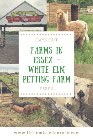 Farms in Essex - White Elm Petting Farm