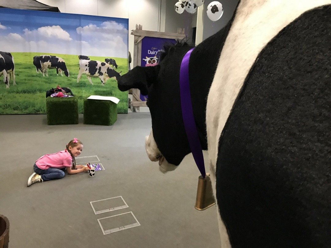 Cadbury's Adopt a Cow Drawing the cow