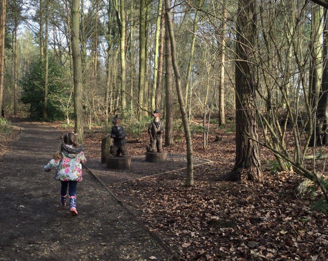 Hanningfield reservior woods
