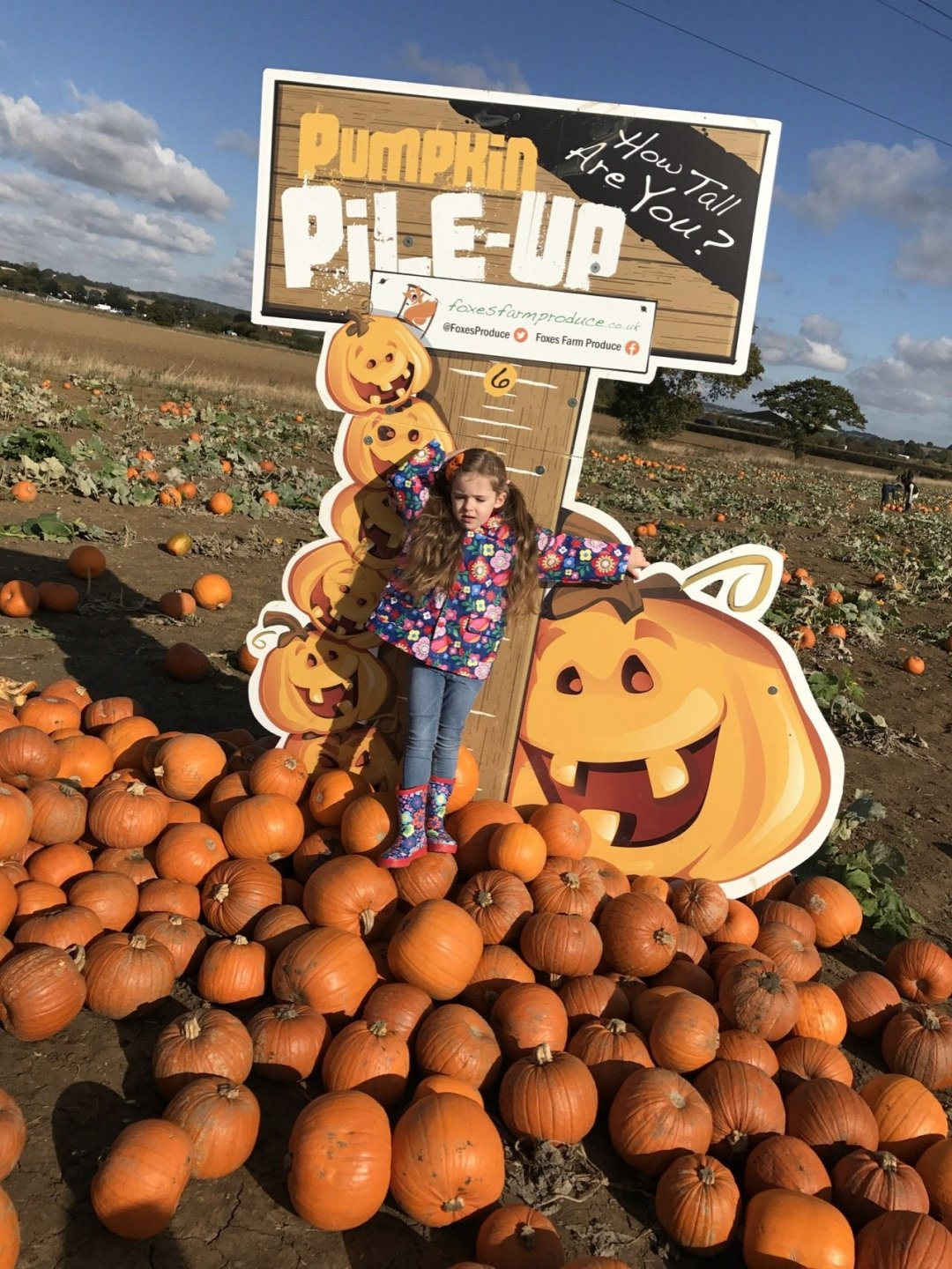 The Pumpkin Patch Halloween Half Term