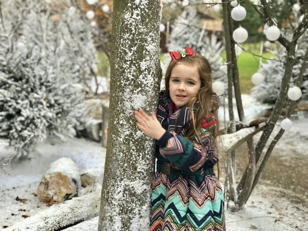 My Sunday Photo, Eden in a snowy wood