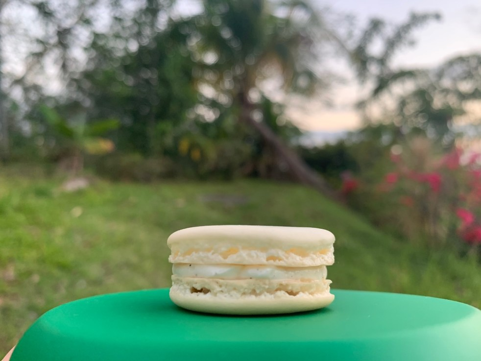 Pretty little classic macaron (with the Caribbean in the far background)