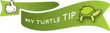 Little Miss Turtle | Travel Tip
