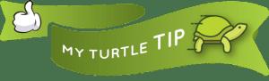 Little Miss Turtle | Travel Tip