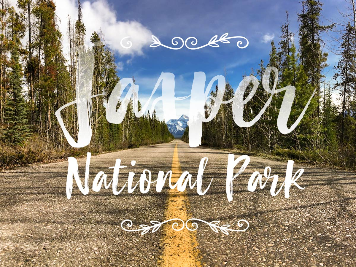 Jasper National Park in a wheelchair