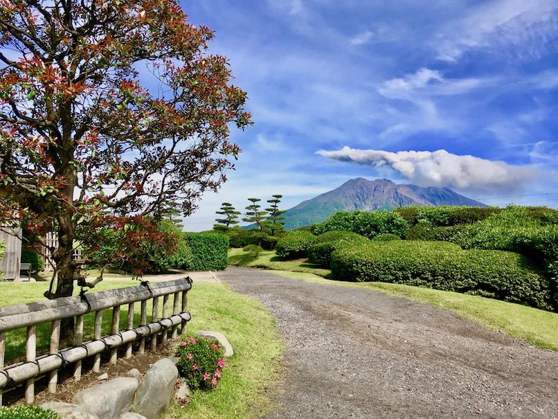 Sakurajima from Sengan-en | Little Miss Turtle
