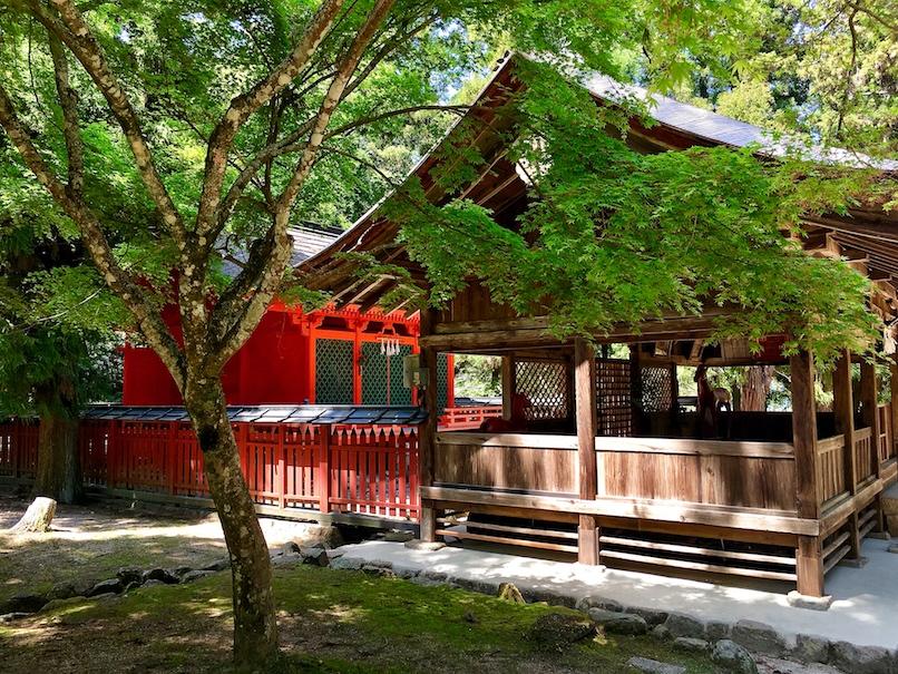 Omoto Shrine in Omoto Park | Little Miss Turtle