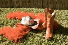 University of Houston, Houston Cougars, Houston Cougar Football, Texas Football