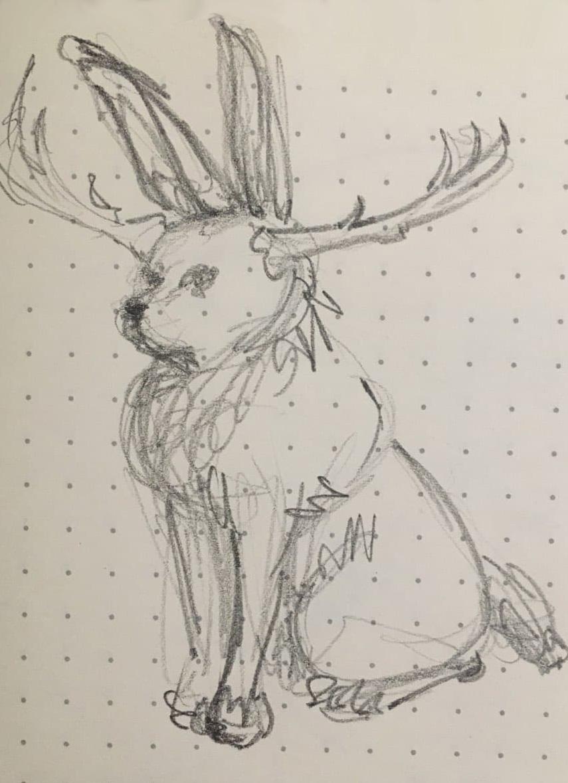 Rabbit Fox Antlers drawing Liz Marxine Morrison animal mashup